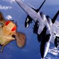 Sinekler Savaş Uçağı Gibi Manevra Yapıyor