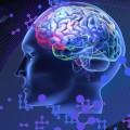 Beyin En Üstün Bilgisayar
