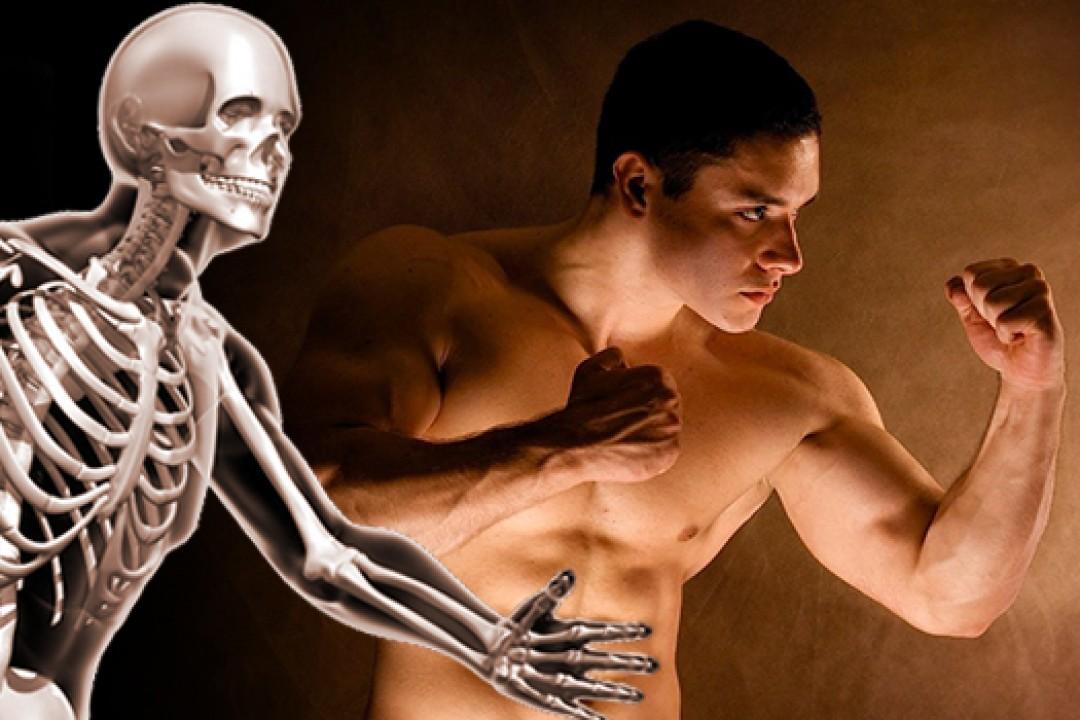 Vücudumuzdaki Hayranlık Verici Detaylar
