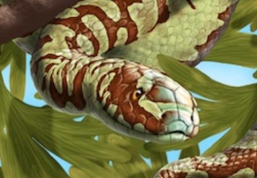 Yılanların Evrimi İddiası Bir Kez Daha Çürütüldü